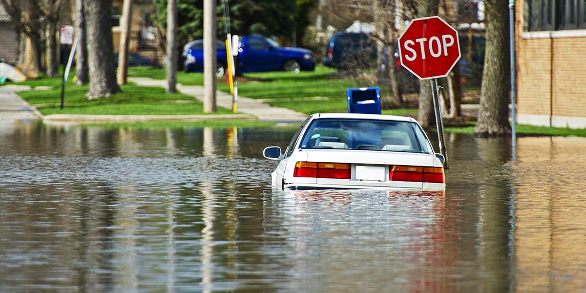 powódź - osuszanie budynków po powodzi